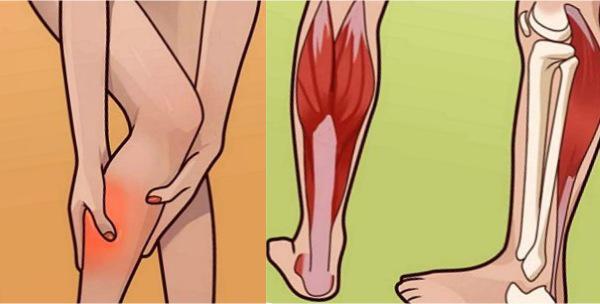 Гипертонус икроножной мышцы