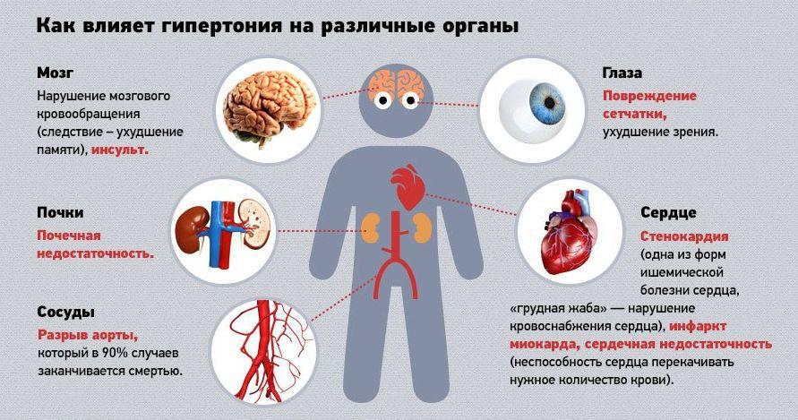 Влияние повышенного артериального давления на различные органы