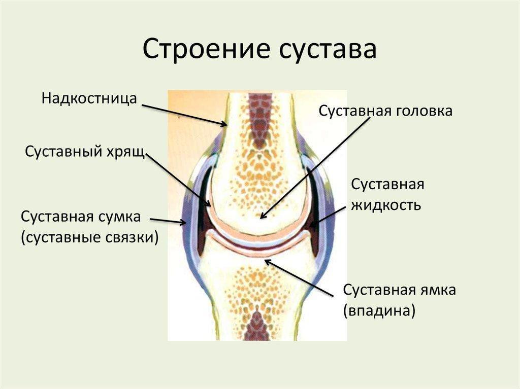 Структура стыков