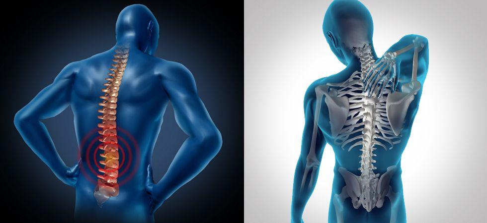 Боли в спине и позвоночник человека