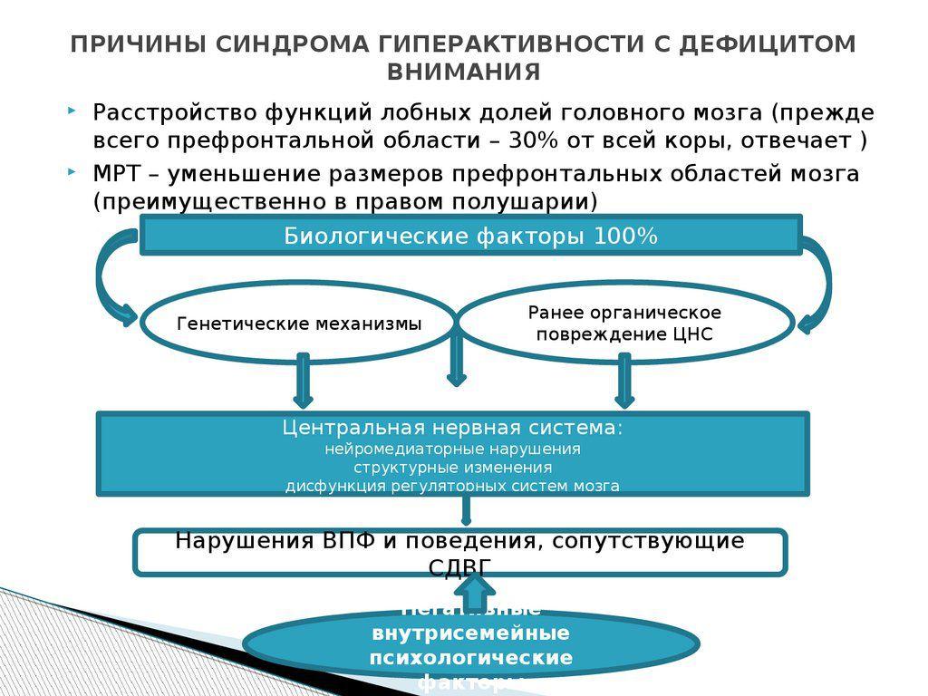 Причины развития СДВГ