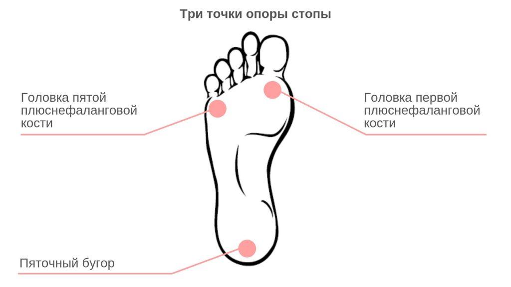 Точки опоры стопы